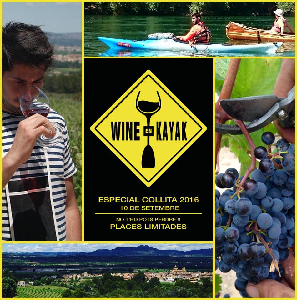 Vins i Olis Suñer - Celler i molí familiar - Wine en Kayak - Turisme actiu i Enoturisme a la Ribera d'Ebre a Tarragona