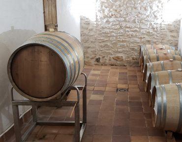 Vins i Olis Suñer – Vins catalans amb denominació d'origen DO Tarragona - varietat Merlot provinent de l'Agricultura Ecològica - Certificats pel Consell Català de producció Agrària Ecològica (CCPAE) -Treballem amb les varietats Merlot i Macabeu