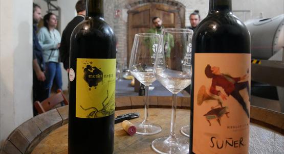 Vins i Olis de Catalunya - Celler i molí familiar - D.O. Tarragona - Vinyes, celler i tast de vins catalans a la Ribera d'Ebre a Tarragona